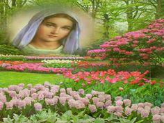JEZUS en MARIA Groep.: HET SCHILD VOOR MARIATOEWIJDING