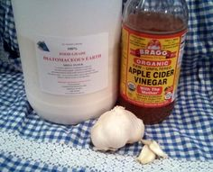 supplement their diet with what I call the 'Holistic Trinity' of healthy chickens: Apple Cider Vinegar, Garlic and Diatomaceous Earth.
