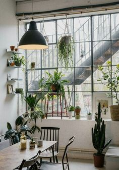 Industrial loft with plenty of lush, green plants.