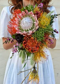 Cascade style wedding bouquet. Made with: King Protea, various Pincushions, Leptospermum, Berzillia, from Resendiz Brothers Protea, and flowers from my cutting garden, Black Scabiosa, Bunny Tails grass, Poppy pods and Celosia. From: A Passion for Flowers: California Grown Floral Inspirations