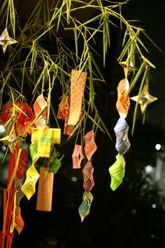 #七夕 #Tanabata