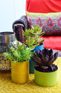 I'm not a big fan of succulents, but happy bright tin cans filled with the little darlings might make me a convert!