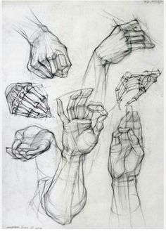Anatomy Drawing Tutorial Old master drawings, construction, synthetic form and Glenn Vilppu. - Page 2 Hand Reference, Figure Drawing Reference, Anatomy Reference, Drawing Lessons, Drawing Techniques, Life Drawing, Drawing Hands, Drawings Of Hands, Anatomy Sketches