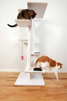 Modern Cat Tree Treecondo Understanding Your Cat Better At Catsincare Com