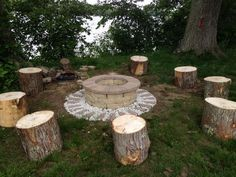 Fire Pit w/tree stump seats