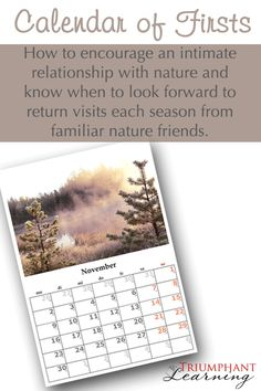 How to encourage an intimate relationship with nature and know when to look forward to return visits each season from familiar nature friends. | Triumphant Learning