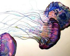 Jelly Fish Amaze me.