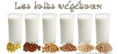 soyabella laits vegetaux vegan vegetalien amande noisette