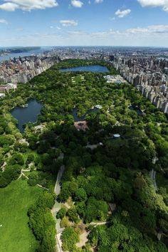Central Park (New York City). 'One of the world's most renowned green spaces checks in with 843 acres of rolling meadows, boulder-studded  utcroppings, elm-lined walkways and manicured European-style gardens. There's also a lake and a reservoir.' http://www.lonelyplanet.com/usa/new-york-city/sights/outdoors/central-park