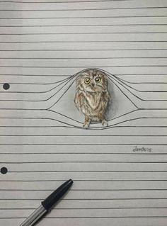 Cute Animal Pencil Drawings – Fubiz Media