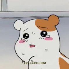 Stupid Memes, Funny Memes, Memes Lindos, Response Memes, Cat Icon, Hamtaro, Current Mood Meme, Cute Love Memes, Anime Expressions