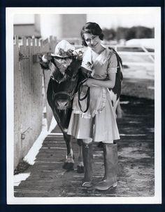 Dorothy Sebastian. Guernsey cow at Adohr Dairy Farm 11x14 by Grimes 1920's