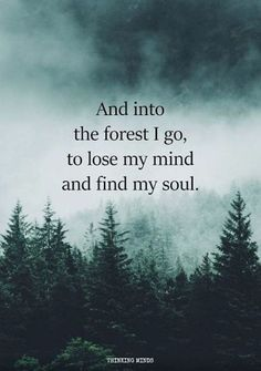 Afbeeldingsresultaat voor and into the forest i go to lose my mind and find my soul