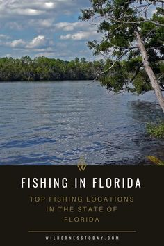 We look at our 10 favorite fishing locations to cast your line in the state of Florida for both saltwater and freshwater fishing excursions. Going Fishing, Best Fishing, Fishing Tips, Fishing Tackle, Carp Fishing, Fishing Lures, Aquatic Ecosystem, Fishing For Beginners, Fishing Techniques