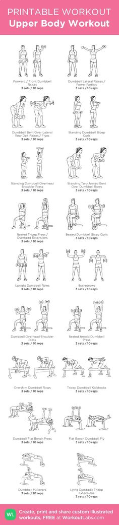 Upper Body Workout – illustrated exercise plan created at WorkoutLabs.com • Click for a printable PDF and to build your own #customworkout http://www.weightlosejumpstart.org/exercise-to-lose-weight/