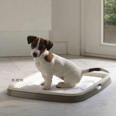 Puppy Trainer Starter Set per educare il vostro cucciolo a fare i suoi bisogni fuori di casa.