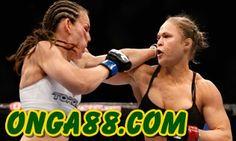 보너스머니♠️♠️♠️  ONGA88.COM  ♠️♠️♠️보너스머니: 보너스머니☀️☀️☀️   ONGA88.COM   ☀️☀️☀️보너스머니 Women Boxing, Female Boxing, Alexis Davis, Ronda Rousey, Golden State Warriors, Ufc, Baseball Cards, Sports, Hs Sports