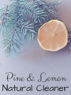 This Pine and Lemon Natural Cleaner works and smells amazing. I don't reserve it for December - I use it all year, because I want it to smell like Christmas all the time, and what's wrong with that? Green Cleaning Recipes, Natural Cleaning Recipes, Natural Cleaning Products, Natural Products, Cleaning Tips, Organic Lifestyle, Natural Lifestyle, Healthy Lifestyle, Healthy Sweet Snacks