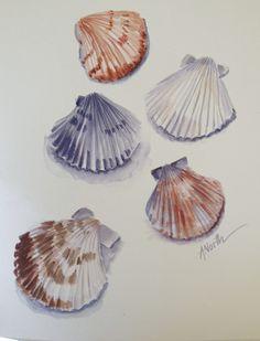 Ann North Watercolor Beach Treasures