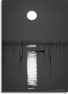 full moon Sun Moon, Stars And Moon, Moon Shine, Black White Photos, Black And White Photography, Moon Dance, Shoot The Moon, Good Night Moon, Beautiful Moon