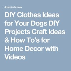 DIY Clothes Ideas for Your Dogs DIY Projects Craft Ideas & How To's for Home Decor with Videos
