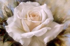 DIY Diamond mosaic painting white roses Embroidery with diamond hobby Icon cloth needlework rhinestone picture cross-stitch Art Floral, Detailed Paintings, Rose Embroidery, Rose Art, Cross Paintings, Pictures To Paint, Beautiful Roses, White Roses, Flower Art