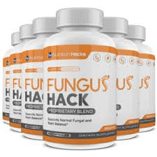 Learn everything you need to know about Fungus Hack. Buy it now at a very special price.