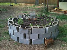for around the honeysuckle in beach garden? Learn how to make a keyhole garden, a specialized type of raised bed garden with a compost basket that makes it extremely water efficient and self fertilizing! Raised Garden Beds, Raised Beds, Growing Plants, Dream Garden, Garden Planning, Lawn And Garden, Herb Garden, Garden Projects, Diy Projects