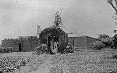 Vintage landscape: bush-houses in Australia Australia House, Shade House, Hothouse, Vintage Landscape, St Helena, Garden Structures, Tropical Plants, Great Britain, North America