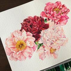 Watercolor Artists, Watercolor Cards, Watercolour Painting, Watercolor Flowers, Botanical Art, Botanical Illustration, Illustration Art, Plant Painting, Beautiful Paintings