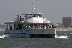 Dolphin Watching Tours at the Rudee Inlet on the Rudee Flipper!
