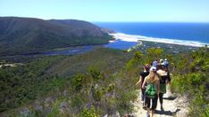 Guided Hiking in the Garden Route | South Africa - Dirty Boots Abseiling, Forest Adventure, Hiking Guide, Bungee Jumping, Adventure Activities, Nature Reserve, Scuba Diving, How To Introduce Yourself, South Africa