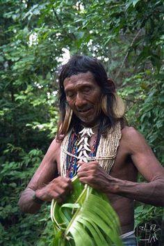 The Rikbaktsa live in the Amazon rain forest of northwest Mato Grosso