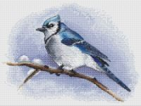 VK is the largest European social network with more than 100 million active users. Cross Stitch Gallery, 123 Cross Stitch, Cross Stitch Bird, Cross Stitch Designs, Cross Stitch Patterns, Beaded Embroidery, Cross Stitch Embroidery, Blue Jay, Beautiful Birds