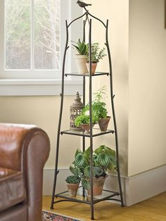 What is a plant stand? Plant stand is an ornamental element that helps you display your interior or outdoor plants on a beautiful platform. Plants stands come in a range of sizes, forms, . Read Best Plant Stand Ideas for Your Own Forest Indoor Plant Wall, Indoor Plants, Indoor Plant Stands, Plantas Indoor, Decoration Plante, Plant Shelves, Corner Plant Shelf, Garden Supplies, Plant Decor
