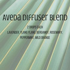 Image result for aveda diffuser blend #Disneyland