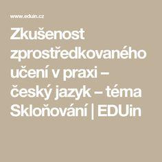 Zkušenost zprostředkovaného učení v praxi – český jazyk – téma Skloňování   EDUin Math Equations