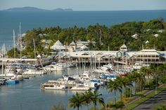The Marina Mirage - Port Douglas - explore the Great Barrier Reef from Port Douglas