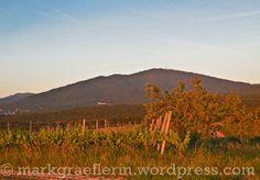 Sonnenuntergang im Markgräflerland – und plötzlich ist Sommer!