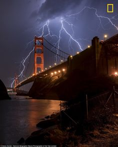 Adorable animal shots and breathtaking vistas showcased in National Geographic's hunt for Nature Photographer of the Year National Geographic, Ponte Golden Gate, Golden Gate Bridge, Lightning Photography, Nature Photography, Photography Tips, Landscape Photography, Portrait Photography, Wedding Photography