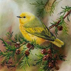 "Daily Paintworks - ""Sun in the Cedars"" - Original Fine Art for Sale - © Paulie Rollins Bird Pictures, Pictures To Paint, Bird Drawings, Vintage Birds, Little Birds, Art Design, Bird Prints, Bird Art, Beautiful Birds"