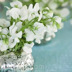 Small mercury-glass containers arranged with white flowers helped fill in the tabletops.