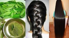 Long, luscious hair is a desire that keeps pricking you. For many years, people in the world have searched and tried different types of home remedies for hair growth. However, each of the hair stra… Beauty Care, Beauty Hacks, Hair Beauty, Beauty Tips, Home Remedies For Hair, Hair Remedies, Homemade Mask, Hair, Beauty