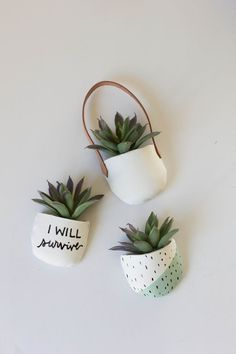 Potted Succulent Magnets | DIY | Always Rooney | Bloglovin'