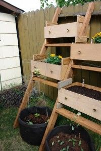 ladders and repurposed old drawers make a fantastic tiered container garden.