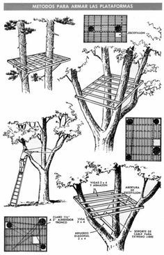 Cool Tree House Ideas to Take Your Project to the Next LevelYou can find Tree house designs and more on our website.Cool Tree House Ideas to Take Your Project to the Next Level Beautiful Tree Houses, Cool Tree Houses, Pallet Tree Houses, Building A Treehouse, Treehouse Kids, Tree House Plans, Diy Tree House, Patio Trees, Tree House Designs