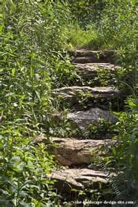 Image Search Results for woodland landscaping ideas