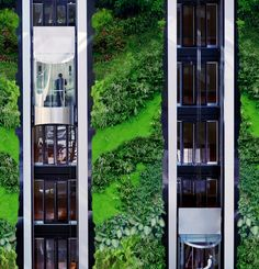 Ascending Hotel Horticulture | Community Post: 39 Insanely Cool Vertical Gardens