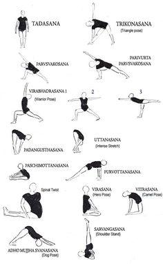 pinmindy kyle on yoga guru  pinterest  beginner yoga