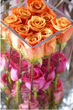 Roses are orange and pink